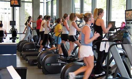 trainer elliptical recommendations